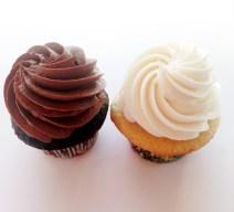 Chocolate and vanilla cupcake assortment