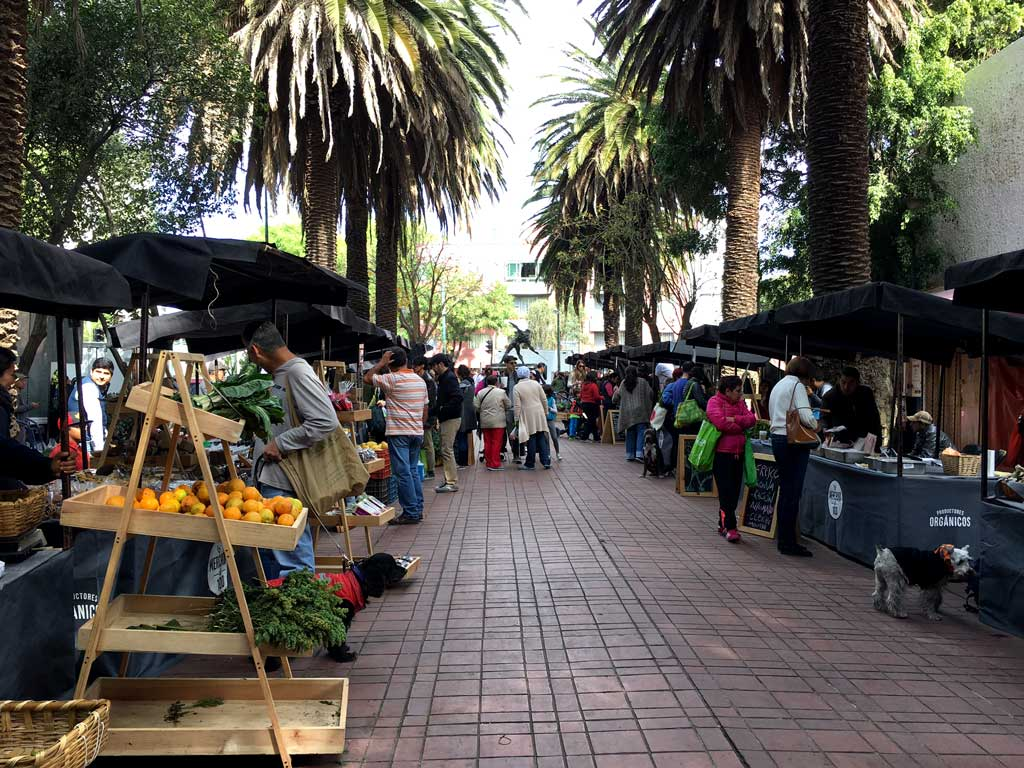 Mercado El 100 - Mexico City's Farmers market | The Curious