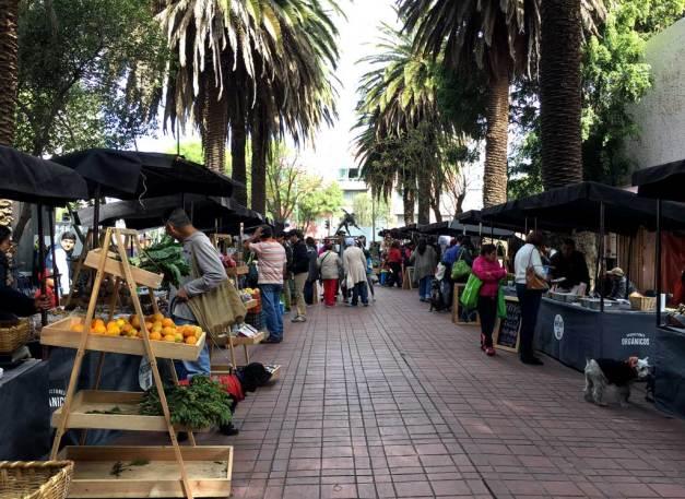 Mercado_el_cien_2
