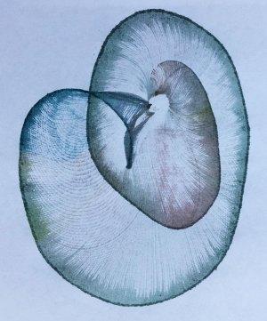 Multi coloured string print spiral