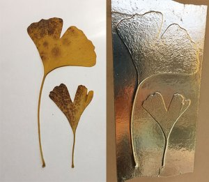 ginkgo leaves and aluminium tape plate