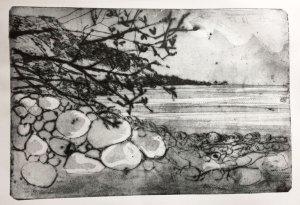 Beach and sea at Hayburn Wyke
