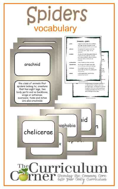 Spiders Vocabulary Resources from The Curriculum Corner FREE