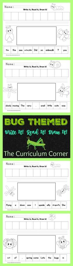 Bug Themed Write It! Read It! Draw It! LIteracy center activity The Curriculum Corner