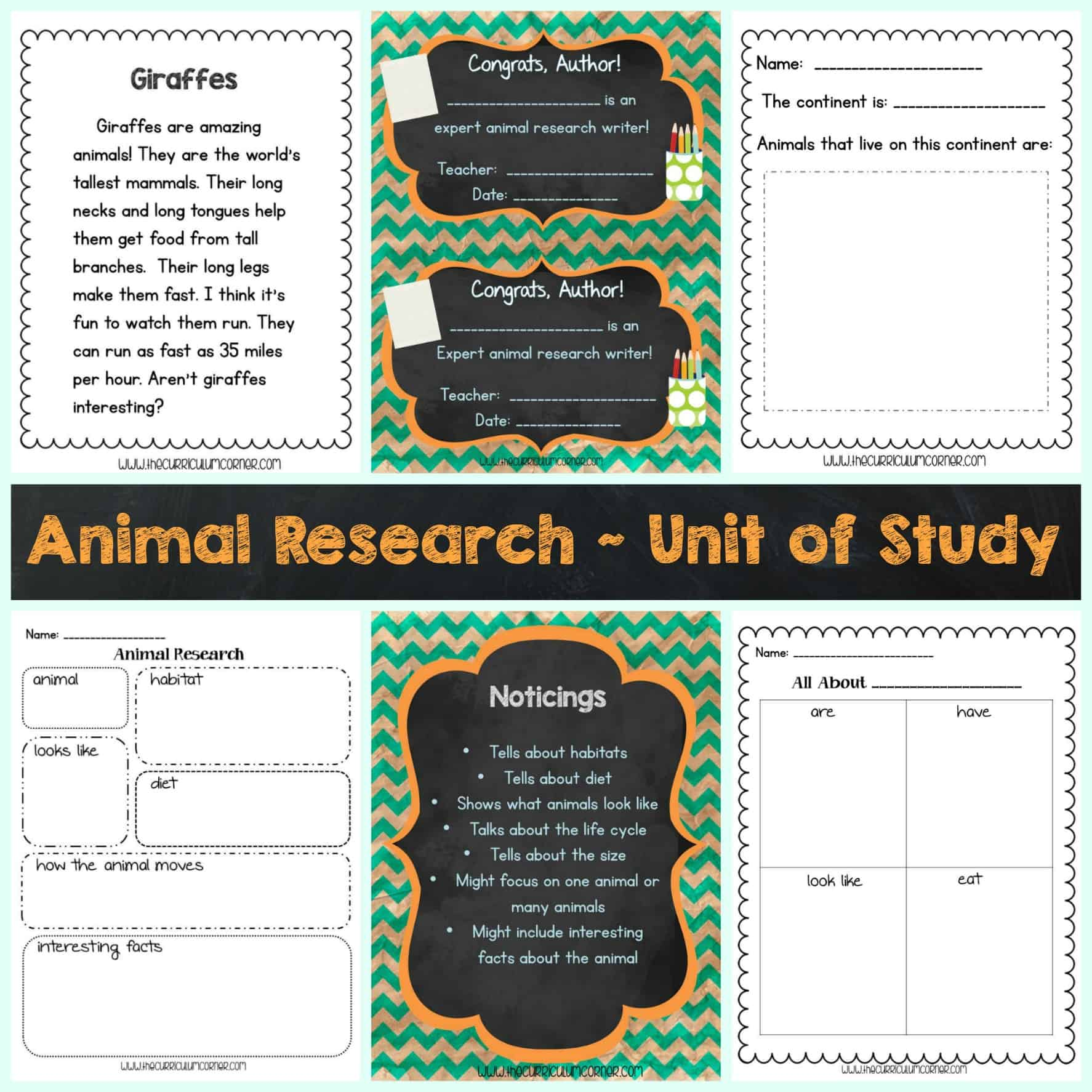 hight resolution of Writing Unit of Study: Animal Research - The Curriculum Corner 123