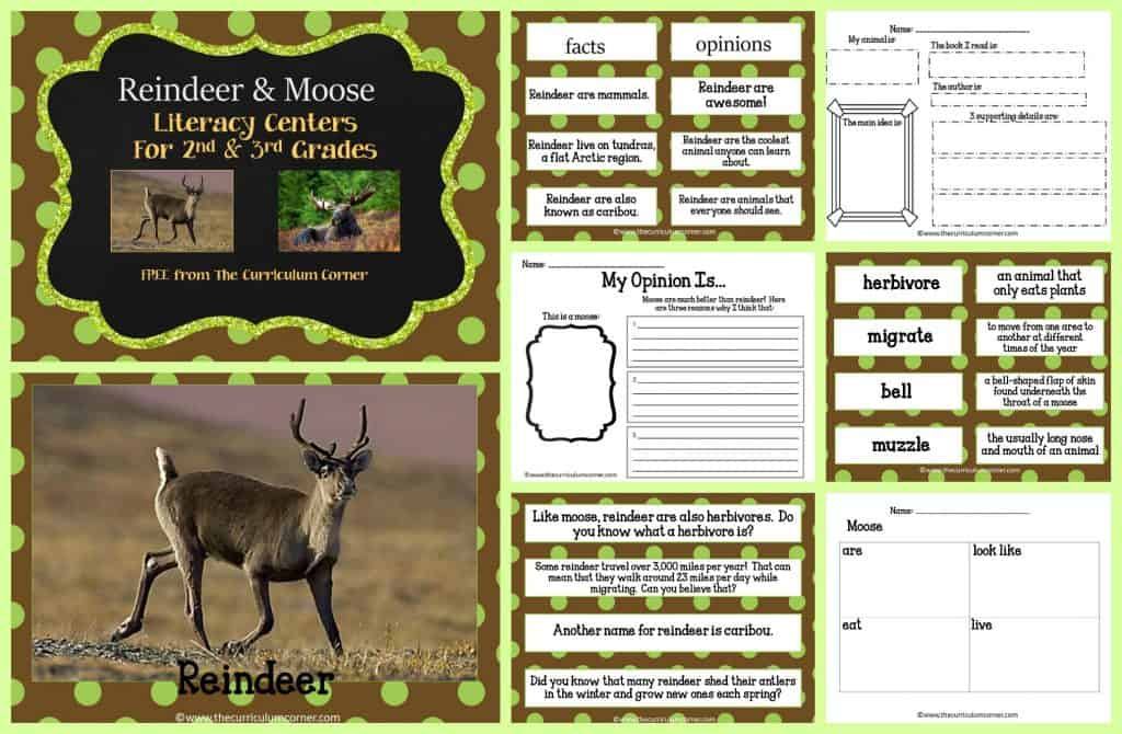 FREE Moose & Reindeer Informational Text Literacy Centers from The Curriculum Corner | 2nd grade, 3rd grade | FREEBIE