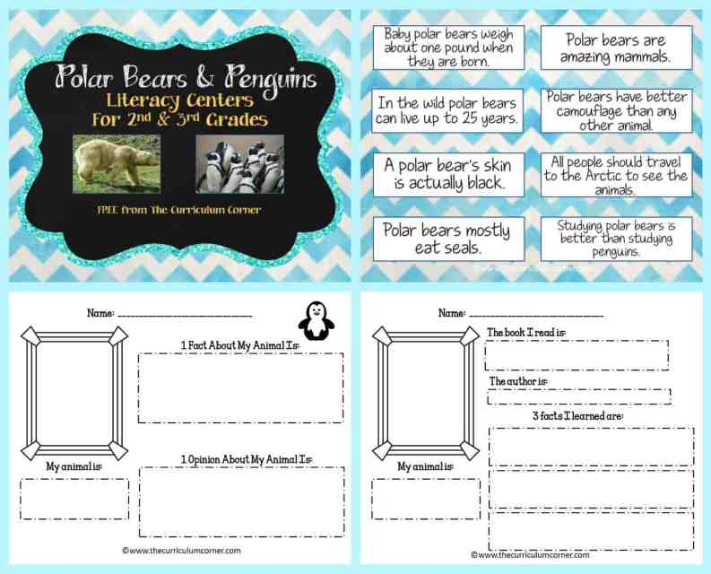 FREE Polar Bears & Penguins informational text literacy centers from The Curriculum Corner FREEBIES | Info Text