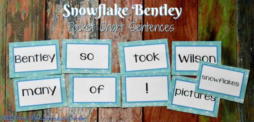 FREE Snowflake Bentley Book Study from The Curriculum Corner | Pocket Chart Scrambled Sentences