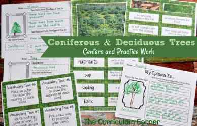 Coniferous & Deciduous Trees Informational Text