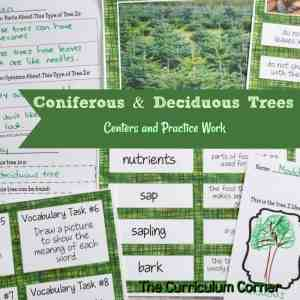 Coniferous & Deciduous Trees Informational Text Work FREE resources for teachers from The Curriculum Corner