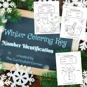 FREE Winter Coloring Key Number Identification Math