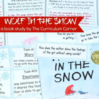 Book Study: Wolf in the Snow