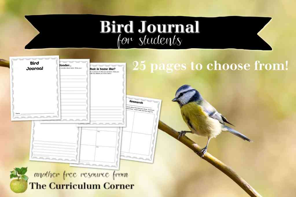 This bird journal for students will be a perfect addition to your bird study in the classroom or homeschool.