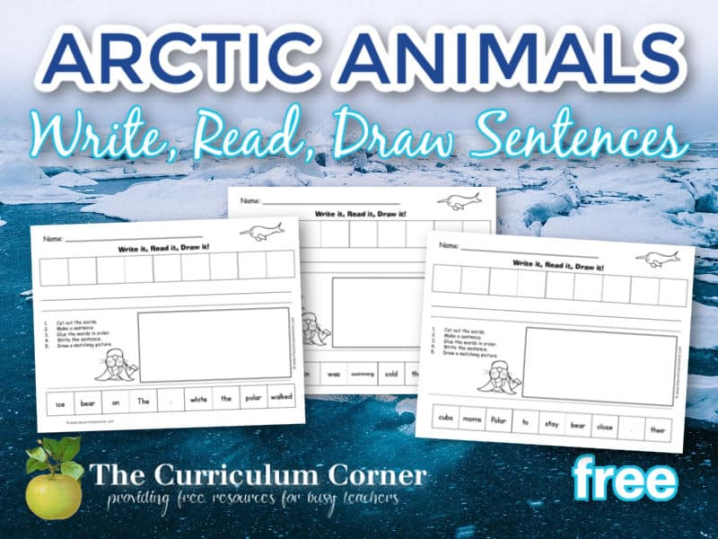 Use this set of Arctic Animals Write It! Read It! Draw It! sentences as a scrambled sentence set.