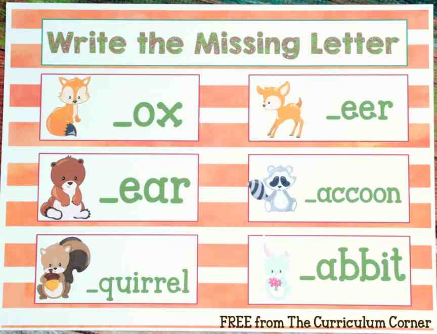 FREEBIE! 18 Forest Animal Math & Literacy Centers for kindergarten & first grades - FREE from The Curriculum Corner