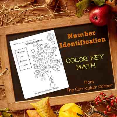 Number ID Fall Color Key Math