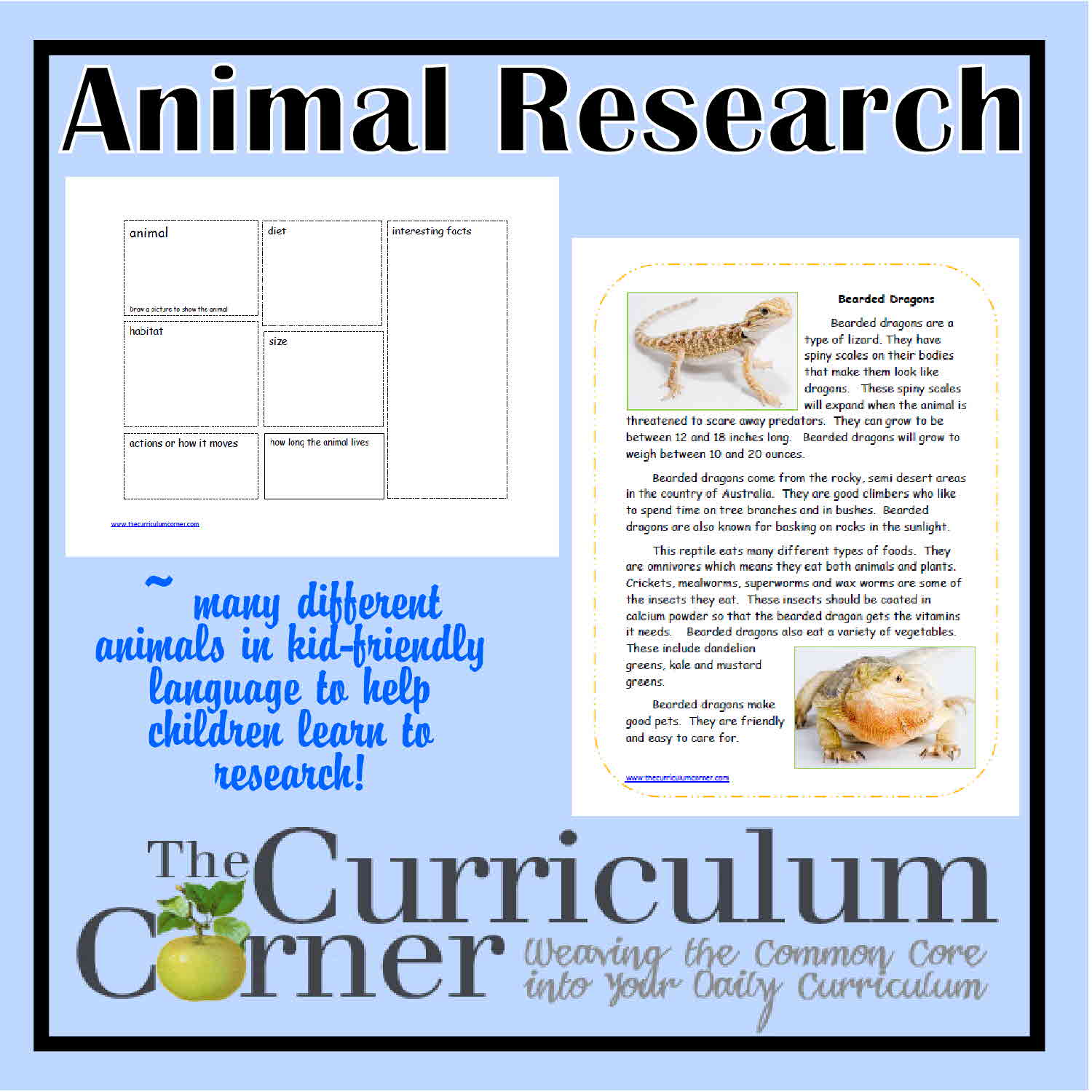 Animal Research Activities
