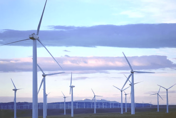 Google bails on plans to buy stake in Africa's biggest wind farm