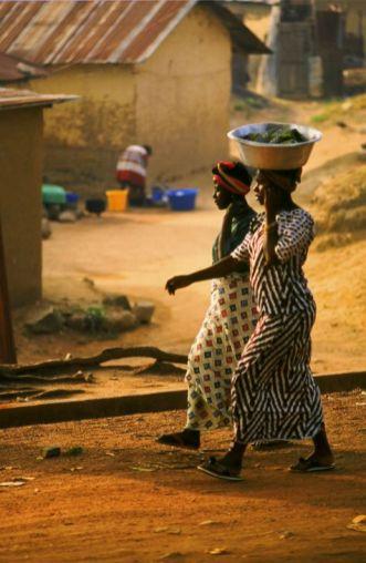 Guinea Blog-Optimized022