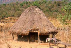 Guinea Blog-Optimized068