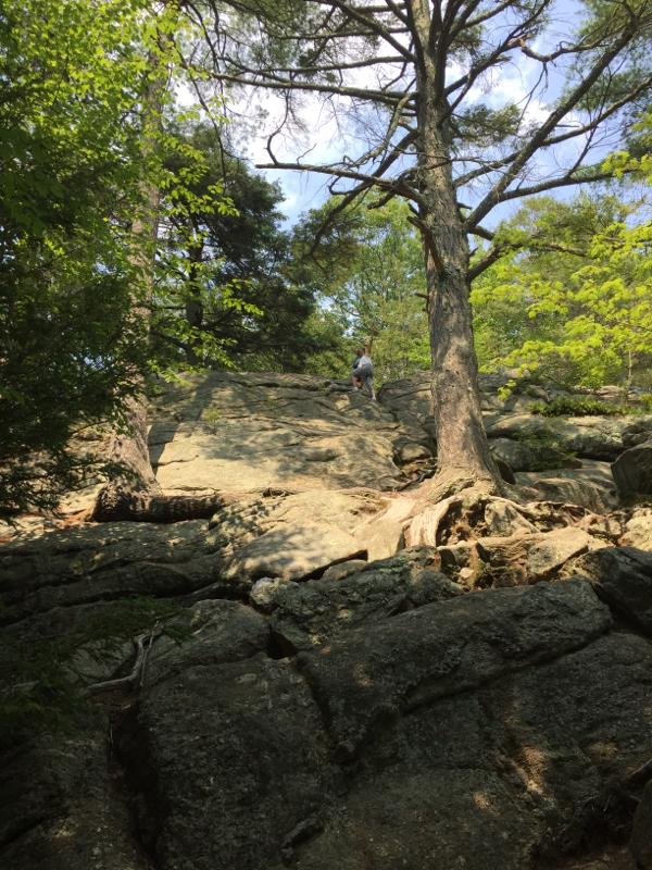 family bouldering massachusetts