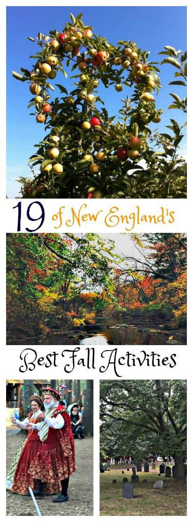 19 of New England's Best Fall Activities! www.thedailyadventuresofme.com