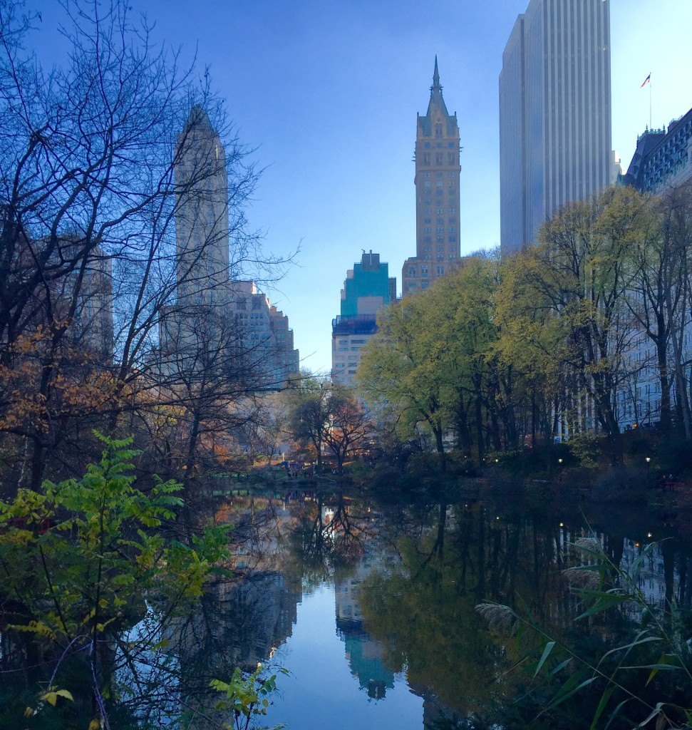 Reflection on one of NY Central Park's many bodies of water.