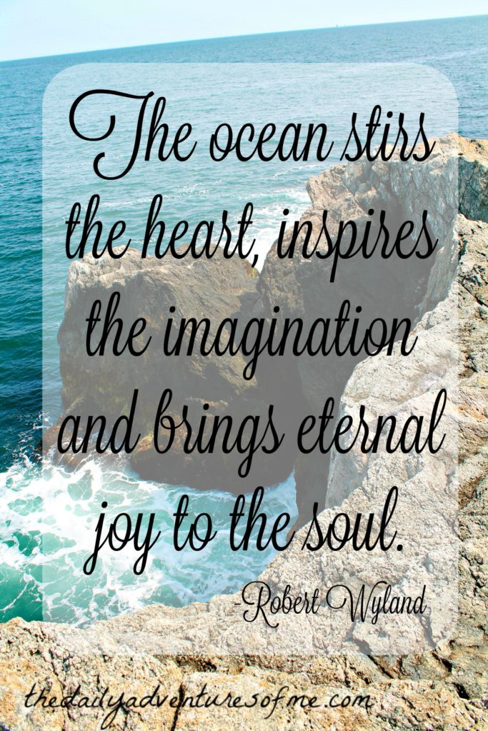 Inspiration from the ocean www.thedailyadventuresofme.com