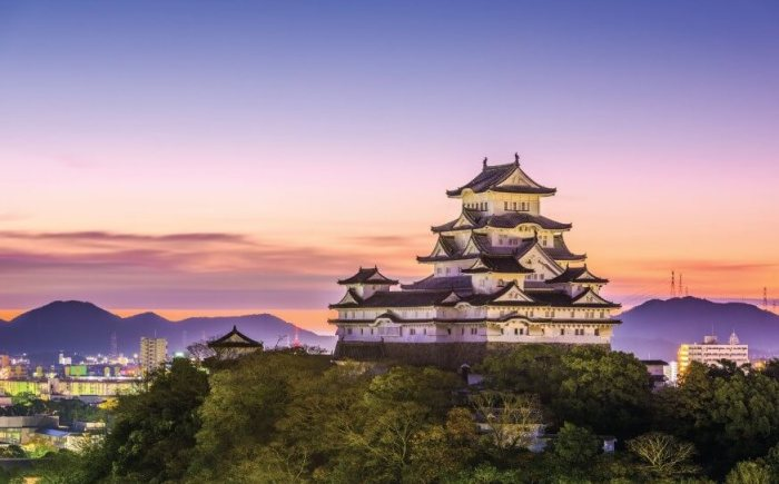 cool things to do in tokyo japan
