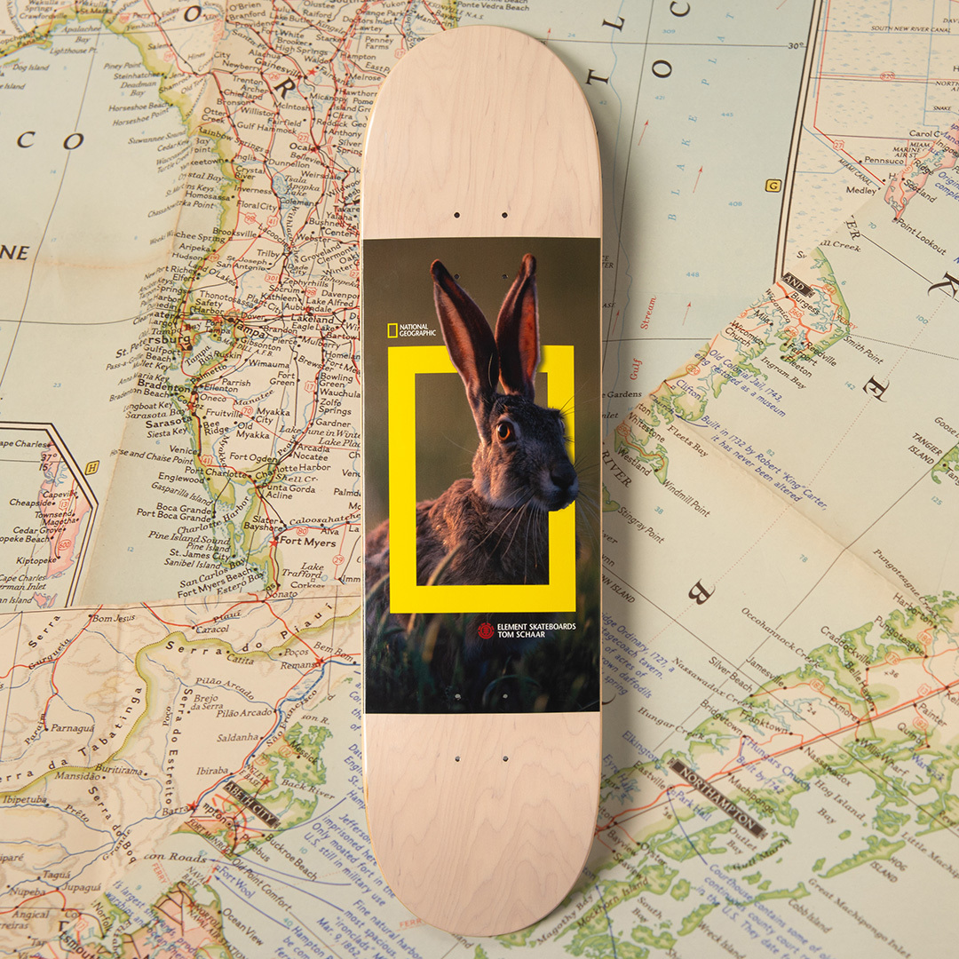 National Geographic Element Skateboards 6