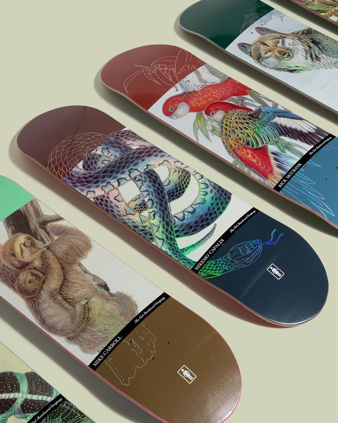 Ecol OG Series Par Girl Skateboards 3