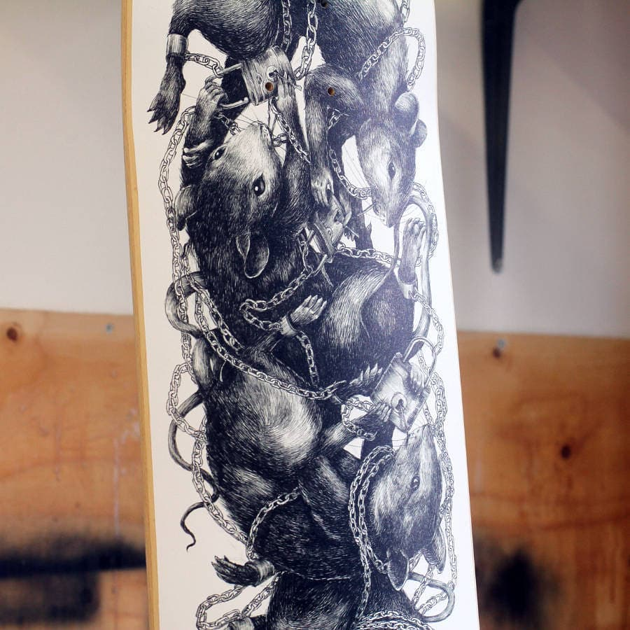 Ericailcane Bonobolabo Skateboard 2