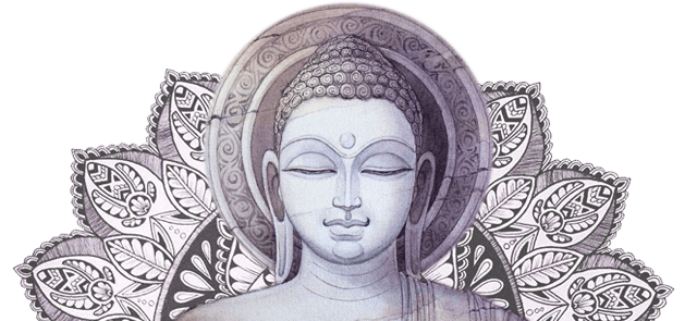 The Daily Buddha