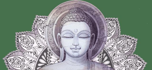 The Daily Buddha
