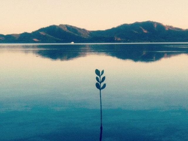 Like Water. . .