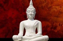 Buddhist Basics. . .