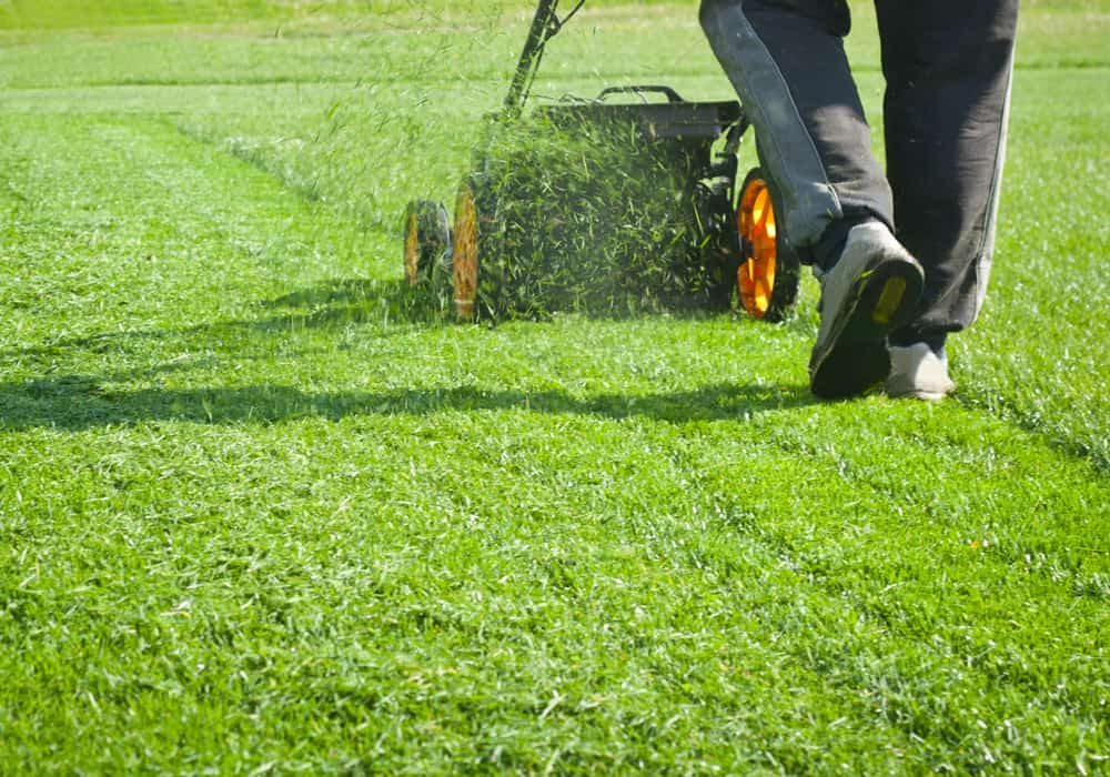 How Many Calories Does Mowing the Lawn Burn?