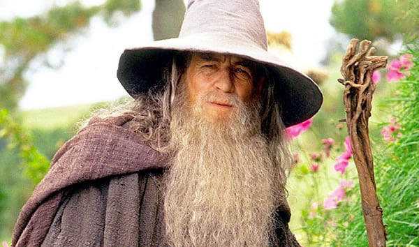 gandalf fellowship of the ring