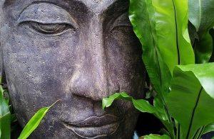 4 Bipolar Meditation Techniques To Cure Bipolar Disorder