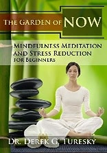 mindfulness meditation and stress reduction