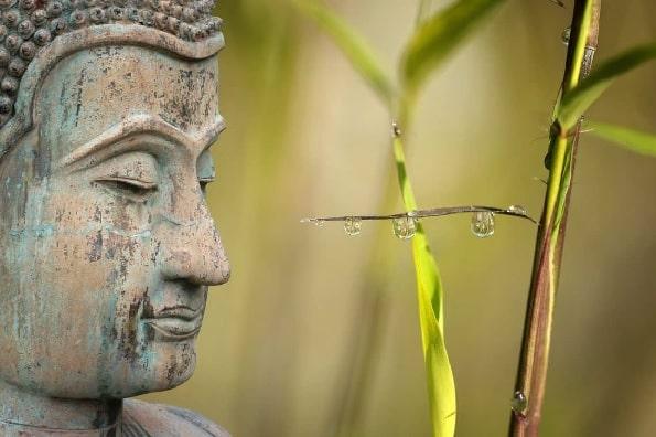 Ultimate Guide To Loving Kindness Meditation [TUTORIAL]