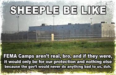 sheeplebelikefemacamps