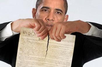 obama constitution