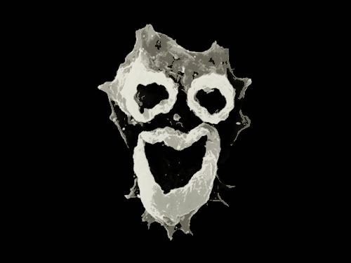amoeba two