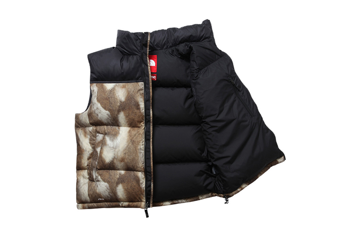 Supreme-The-North-Face-AW13-Outwerwear-07