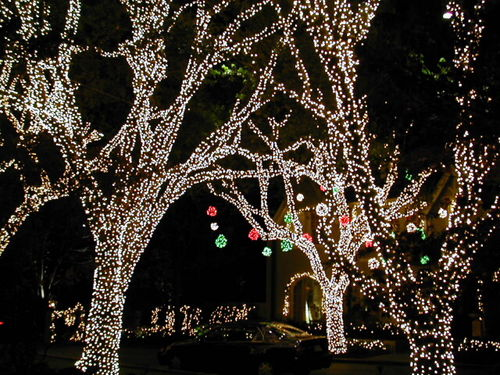 Where to View Christmas Lights In Dallas | Dallas Socials