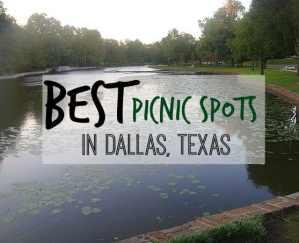 The Best Picnic Spots in Dallas