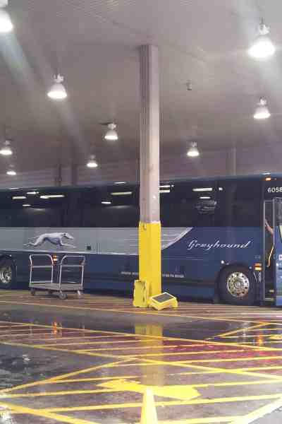 Take a Ride on the New & Improved Greyhound Express