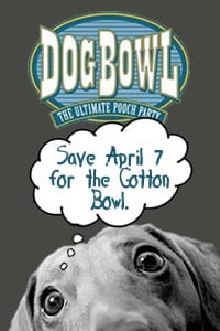 Seventh Annual Dog Bowl on April 7th