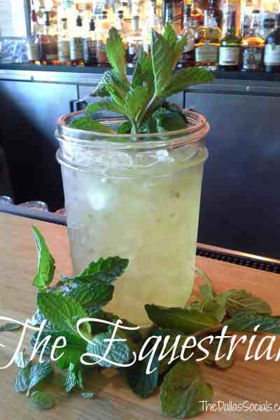 Thirsty Thursday: The Equestrian (Mint Julep Substitute)